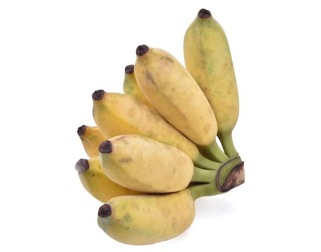 Banana cultivada isolada em fundo branco