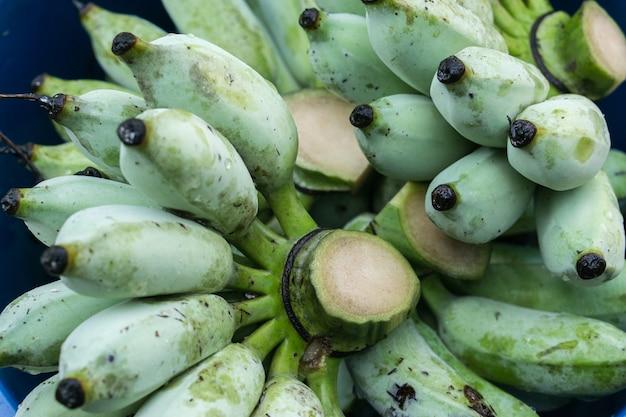 Banana verde na fazenda. mão que guarda bananas verdes da mostra para a venda.
