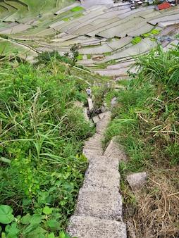 Banaue, filipinas - 8 de março de 2012. os terraços de arroz em banaue, filipinas