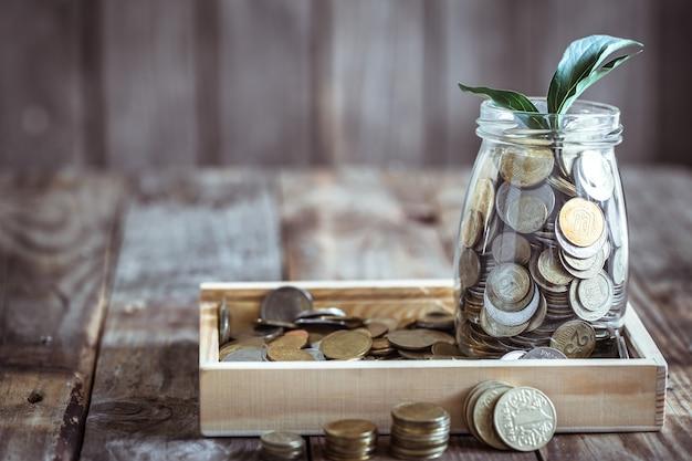 Banco com moedas e broto verde
