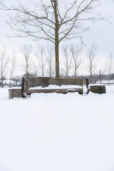 Banco de jardim e árvores cobertas por neve fresca na paisagem de inverno natureza colorida