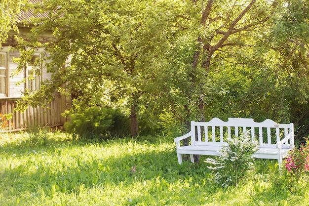 Banco de madeira branco em jardim de verão