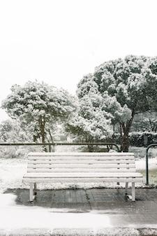 Banco de madeira vazio coberto de neve colocado em uma passarela de asfalto no parque no inverno