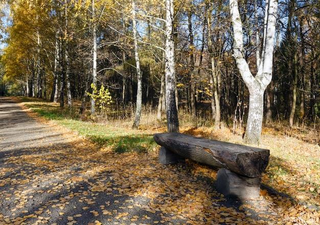 Banco de toras de madeira ao longo da trilha no parque dourado da cidade de outono.