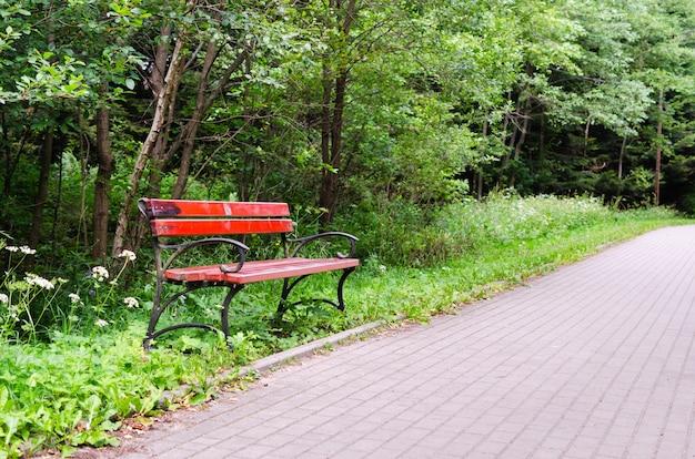 Banco no parque da cidade em dia ensolarado de verão