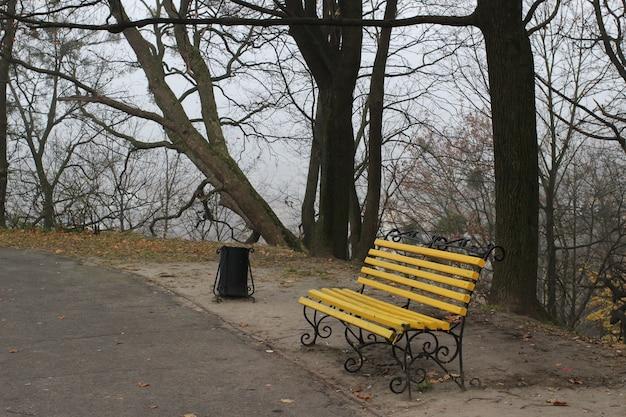 Banco no parque em novembro