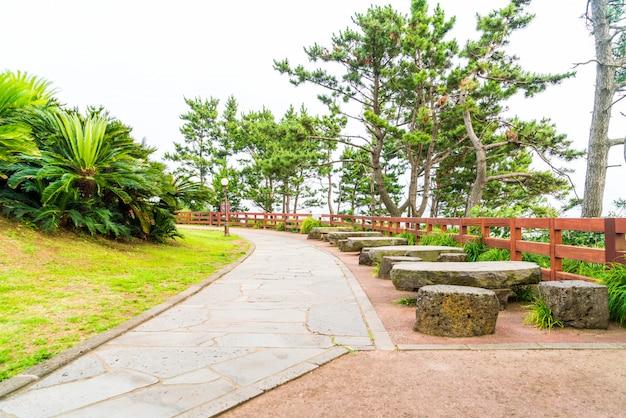 Banco vazio no parque em jungmun daepo costa jusangjeolli cliff, ilha de jeju