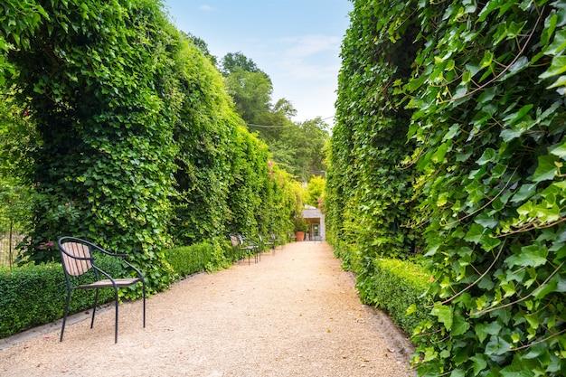 Bancos entre arbustos aparados, parque de verão