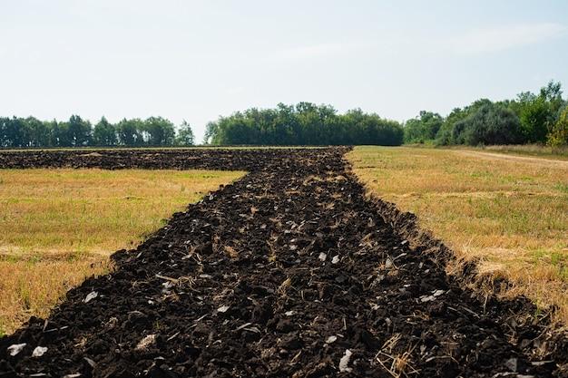 Banda cavou a terra preta para o plantio