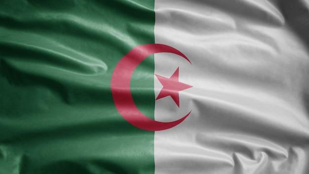 Bandeira da argélia balançando ao vento