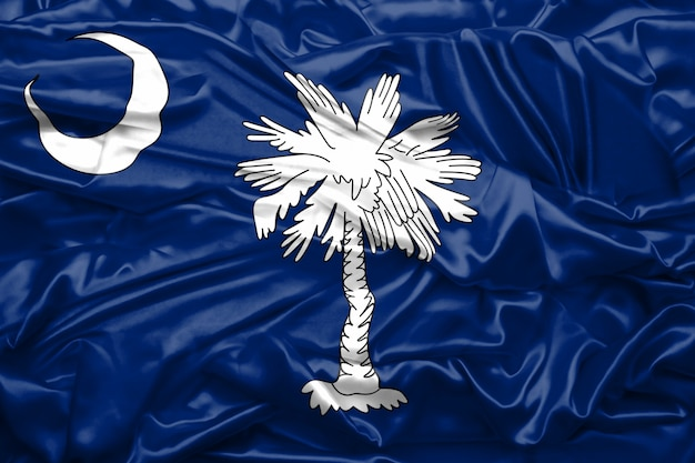 Bandeira da carolina do estado dos estados unidos da américa na textura de seda macia e suave