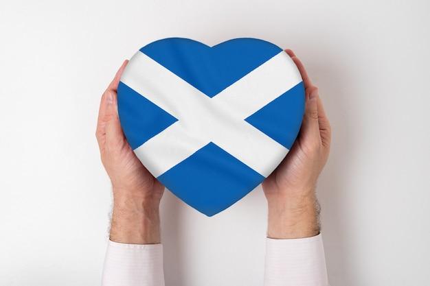 Bandeira da escócia em uma caixa em forma de coração nas mãos masculinas. fundo branco