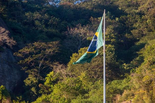Bandeira das árvores do brasil ao ar livre em segundo plano no rio de janeiro, brasil.