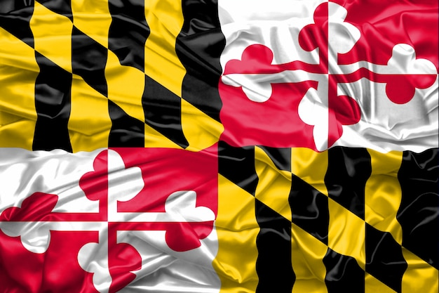 Bandeira, de, maryland, estado, de, estados unidos américa