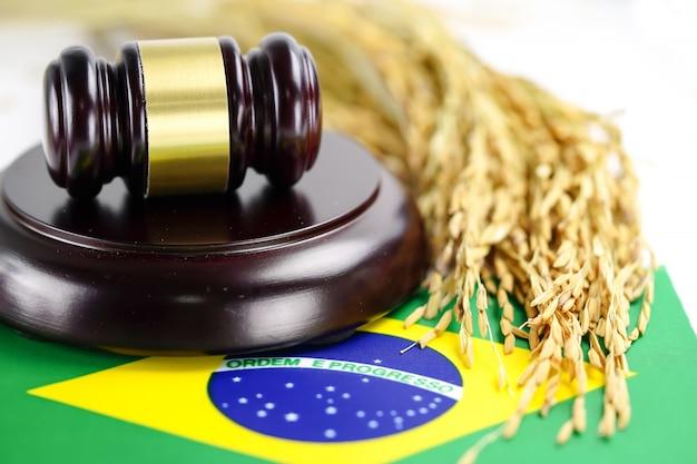 Bandeira do brasil e martelo do juiz