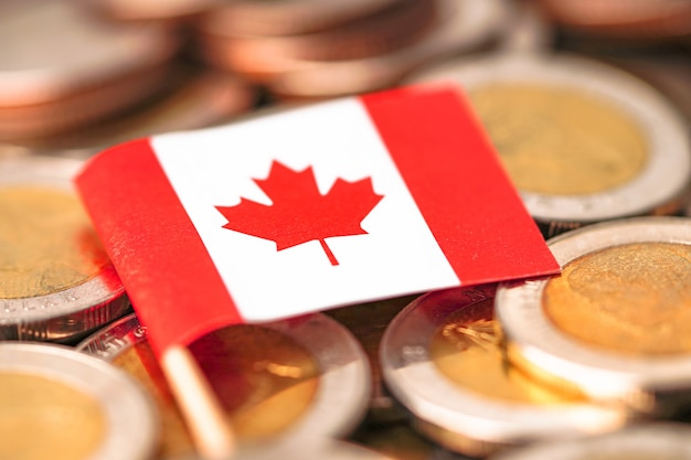 Bandeira do canadá em moedas