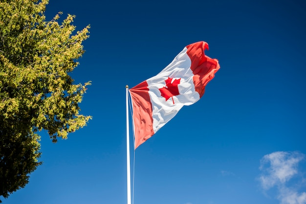 Bandeira do canadá no céu azul