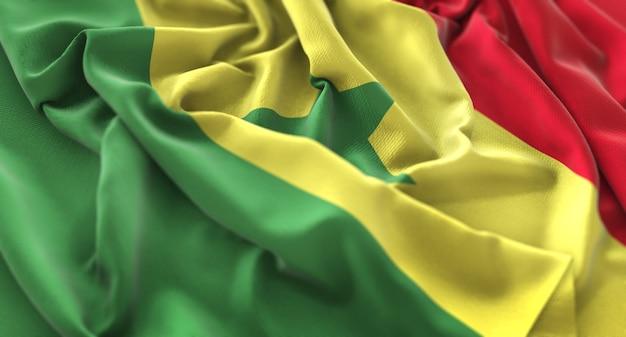 Bandeira do senegal ruffled beautifully waving macro close-up shot