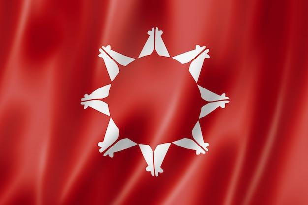 Bandeira étnica de pessoas sioux, eua