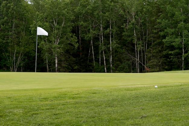 Bandeira golfe, em, um, campo golfe, hecla, grindstone, parque provincial, manitoba, canadá