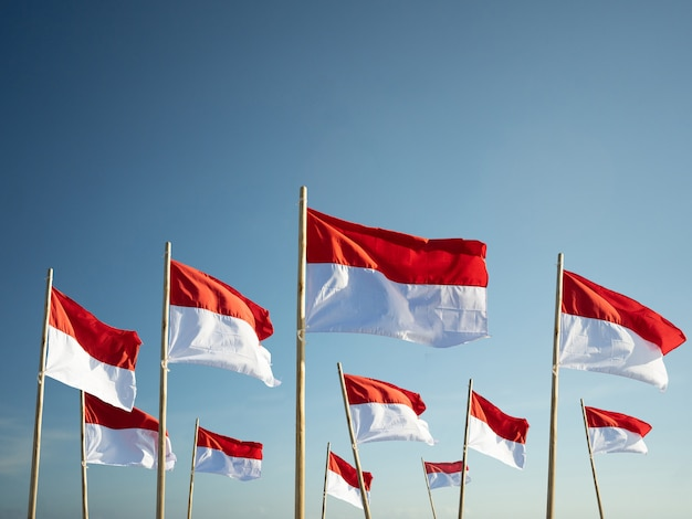 Bandeiras da indonésia sob o conceito de dia da independência de céu azul