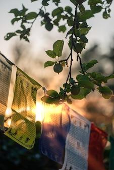Bandeiras de orações budistas tremulam ao vento. budismo de fé.