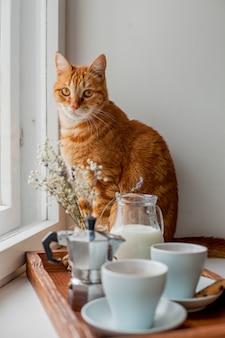 Bandeja de café da manhã com um gato
