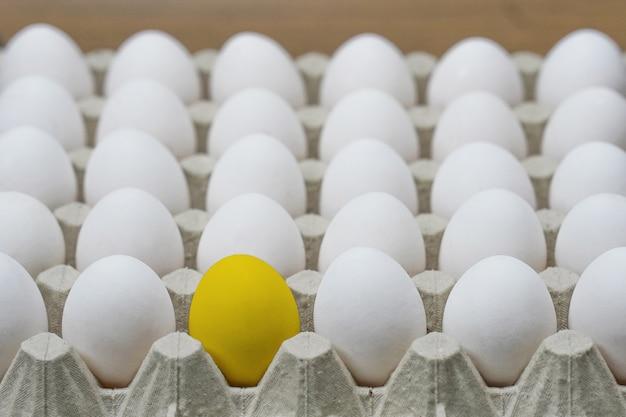 Bandeja de ovos de galinha. perdido. vista lateral