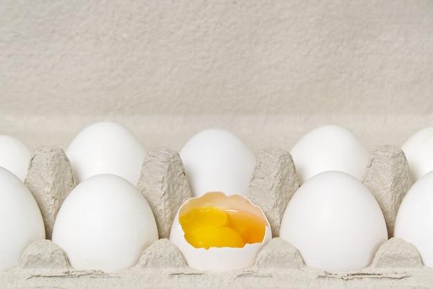 Bandeja de ovos de papel com ovos brancos.