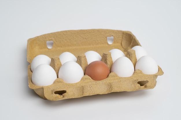 Bandeja de papel cheia de ovos brancos e apenas um ovo de laranja diferente.