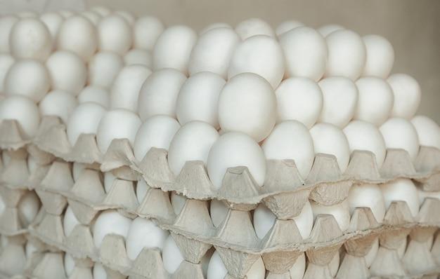 Bandejas com ovos de galinha armazenados