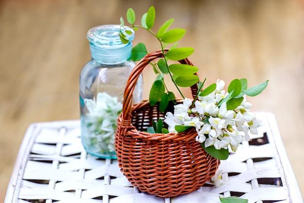 Bando de acácia em uma cesta de vime coletando ingredientes para cosméticos naturais de gafanhoto preto