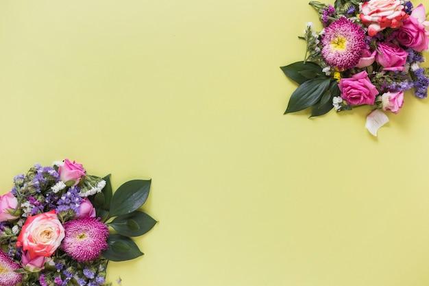 Bando de flores frescas em fundo colorido