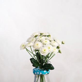 Bando de flores frescas em vaso