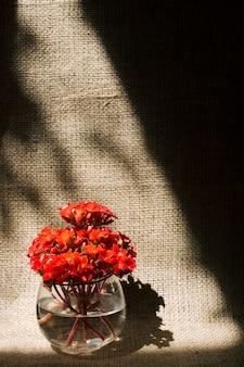 Bando de flores vínicas em vaso com água