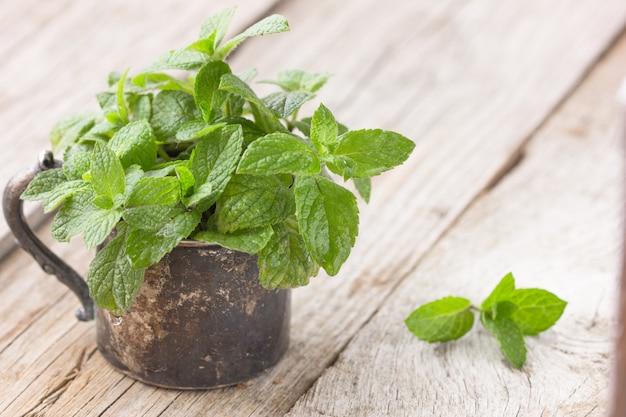 Bando de folha de hortelã orgânica verde fresca na mesa de madeira