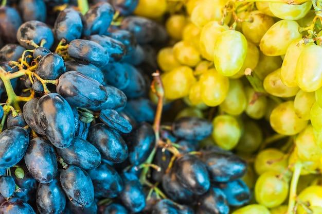 Bando de frutas de uvas pretas e verdes