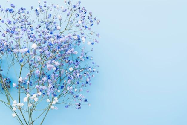 Bando de galhos de flores azuis frescas