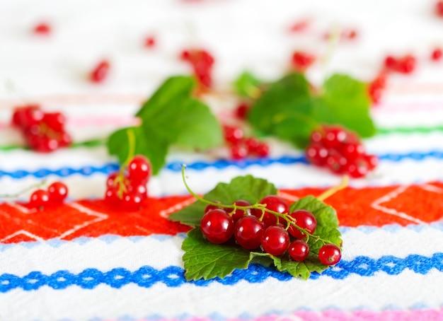 Bando de groselha vermelha encontra-se nas folhas de groselha.