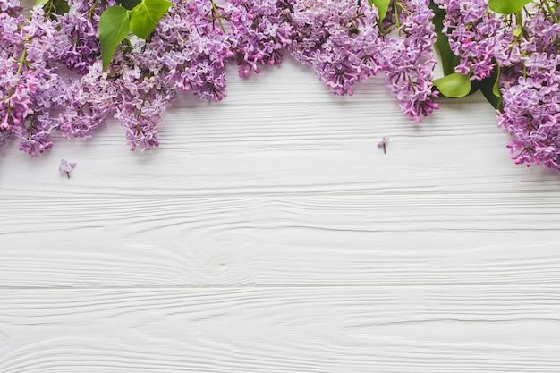 Bando de lilás adorável