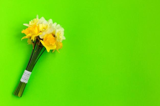 Bando de narciso amarelo em verde