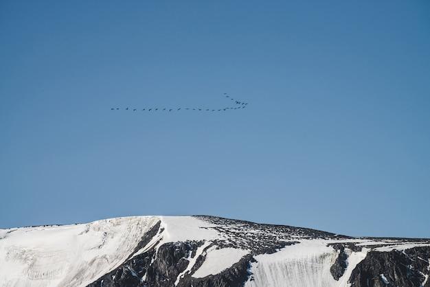 Bando de pássaros no céu azul sobrevoam o cume da montanha gigante de neve