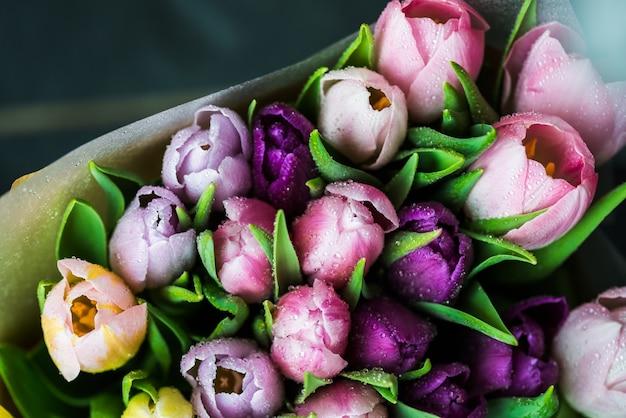 Bando de tulipas coloridas