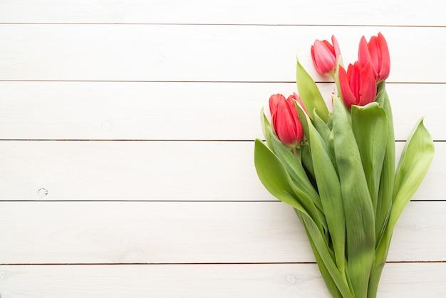 Bando de tulipas da primavera sobre fundo branco de madeira, vista superior plana lay