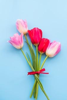Bando de tulipas vermelhas e rosas