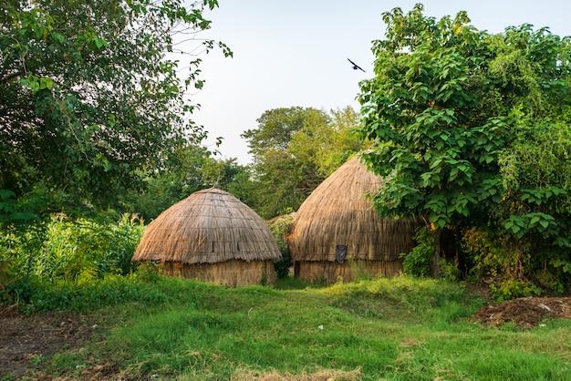Bangalôs no campo