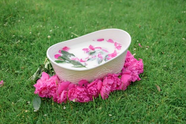 Banho de bebê e flores de peônia. peônias cor de rosa.