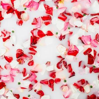 Banho de leite decorado com pétalas coloridas