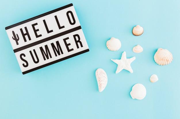 Banner com texto de verão e conchas na luz de fundo