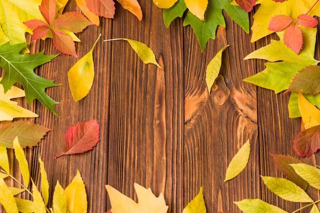 Banner de outono com folhas de árvore colorida na madeira marrom